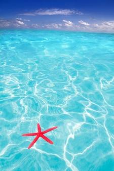 Stella marina come simbolo dell'estate in spiaggia tropicale
