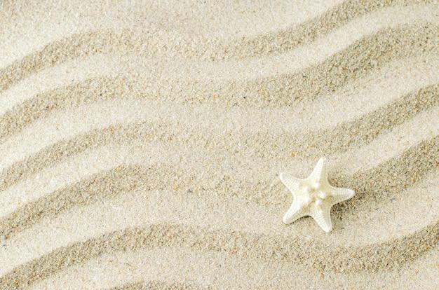 Stelle marine bianche sul fondo di struttura della sabbia con il modello di onda