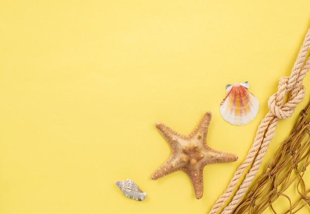 Stelle marine copia-spazio e rete da pesca
