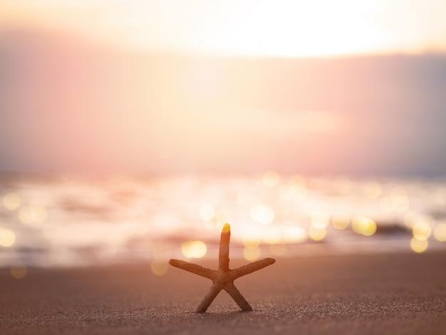 Stelle marine della siluetta sulla sabbia alla spiaggia di tramonto
