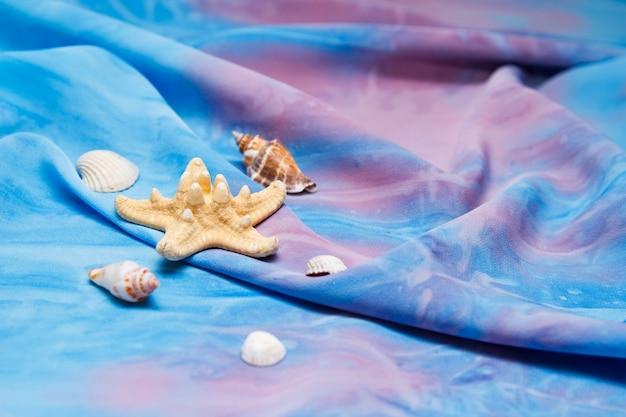 Stelle marine e conchiglie su sfondo blu.