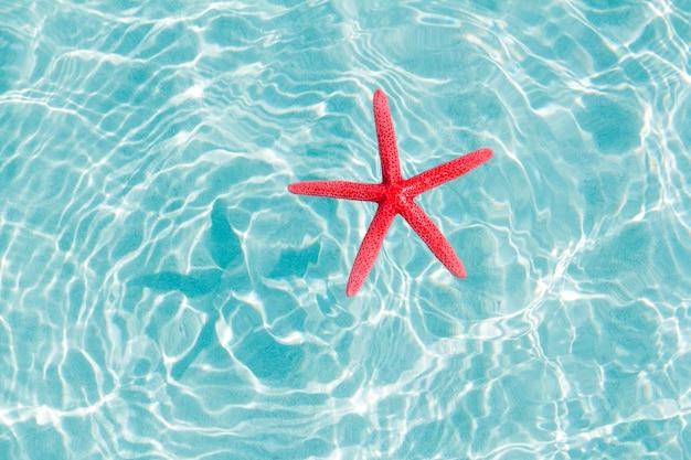 Stelle marine rosse galleggianti in spiaggia di sabbia turchese