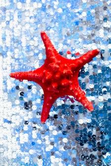 Stelle marine secche del mar rosso sul panno d'argento cian.