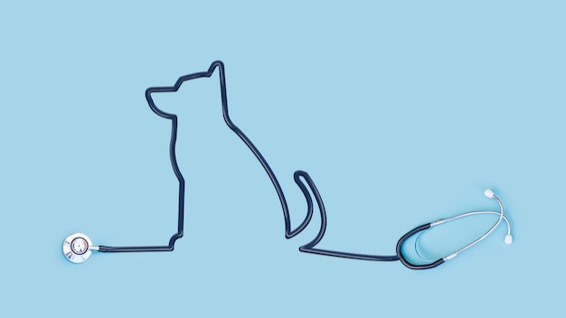 Stetoscopio con tubo contorno cane
