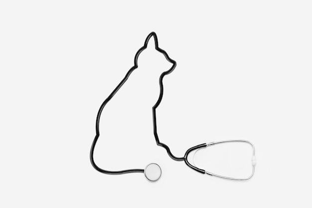 Stetoscopio con tubo per contorni di gatto