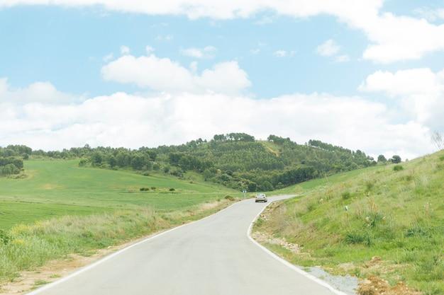 Strada asfaltata con una natura incontaminata