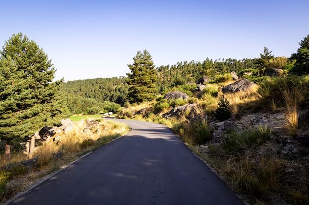 Strada asfaltata vuota attraverso una montagna