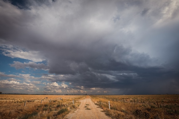 Strada circondata da un campo ricoperto di vegetazione sotto un cielo nuvoloso scuro