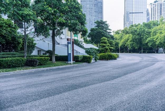 Strada con alberi