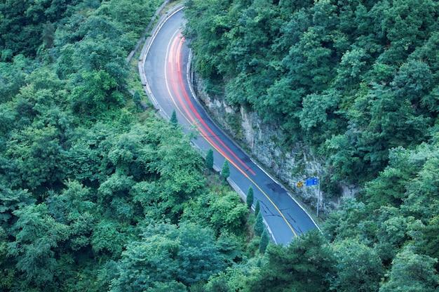Strada curva attraverso la foresta. vista aerea.