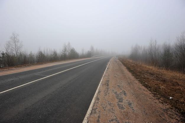Strada d'autunno nella nebbia