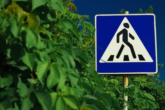 Strada del passaggio pedonale del segnale stradale in foglie verdi