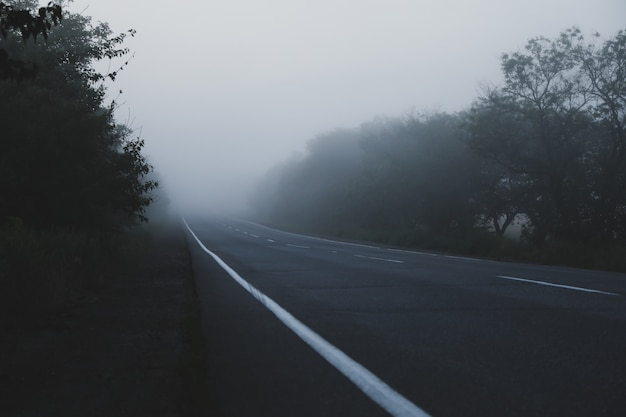 Strada di mattina nebbiosa. bella mattina d'estate. viaggio