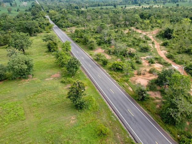 Strada di vista aerea che attraversa la foresta