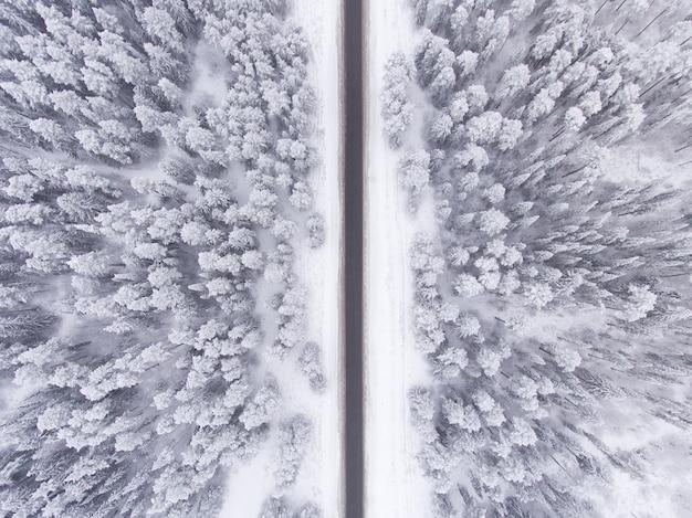 Strada nella vista a volo d'uccello della foresta nevosa di inverno