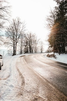 Strada sinuosa coperta di sporcizia e neve circondata da alberi al sole