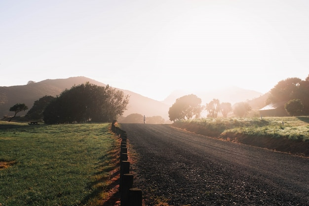 Strada stretta della ghiaia della campagna nel mezzo di un campo verde con gli alberi e le colline