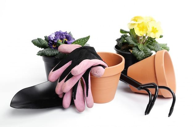 Strumenti di giardinaggio e vaso di fiori isolati