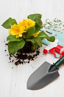 Strumento di giardinaggio e fiori colorati