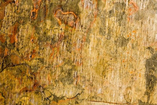 Struttura arrugginita del fondo delle rocce dure