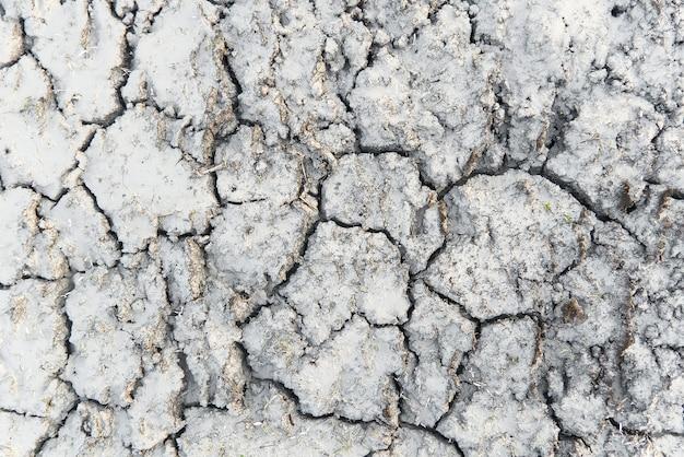 Struttura asciutta della terra incrinata, immagine presa vicina.