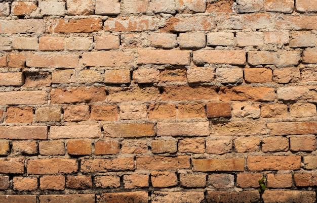 Struttura del fondo della parete di pietra
