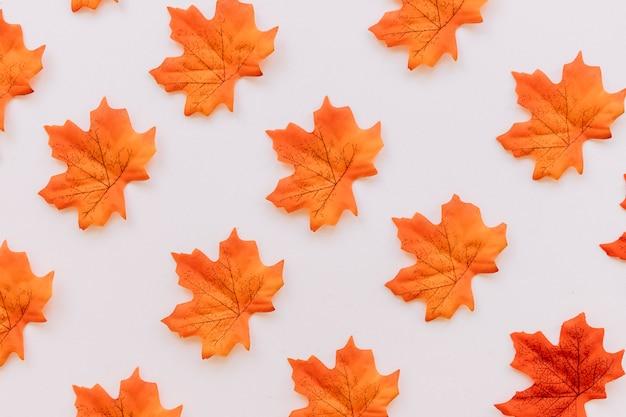 Struttura del fondo delle foglie di autunno