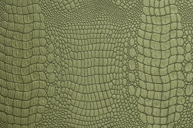 Struttura della pelle di coccodrillo verde oliva come una carta da parati