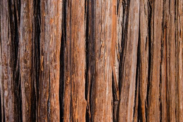 Struttura della quercia di pino e fondo di legno