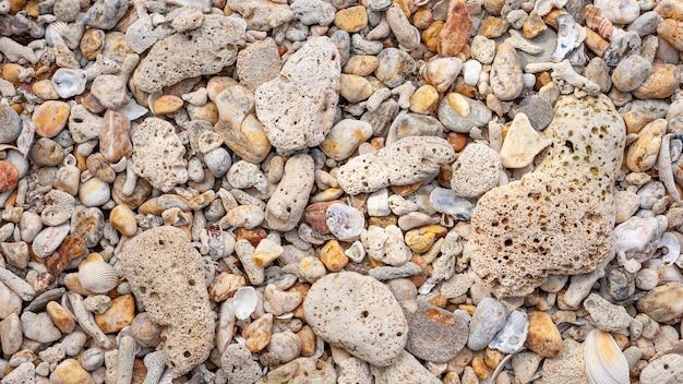 Struttura della spiaggia delle coperture e del corallo per estate