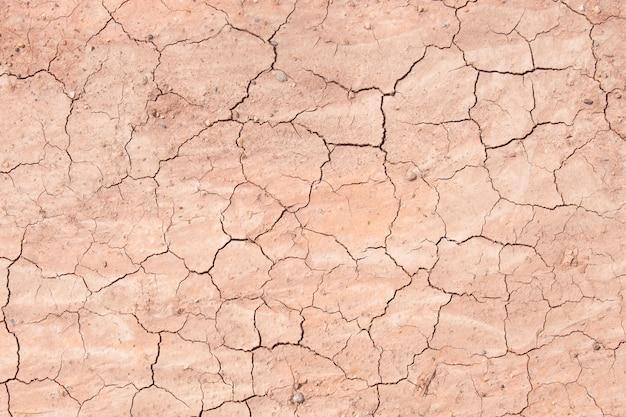 Struttura della sporcizia asciutta del suolo crackled o terra durante la siccità.
