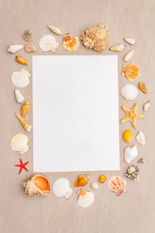 Struttura delle conchiglie e fondo bianco del foglio di carta in bianco. scheda, nota, documento, vista dall'alto