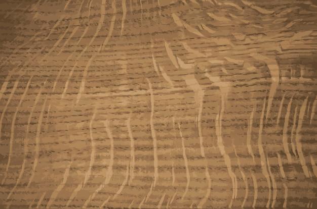 Struttura di legno radiale di quercia. raggi del nucleo