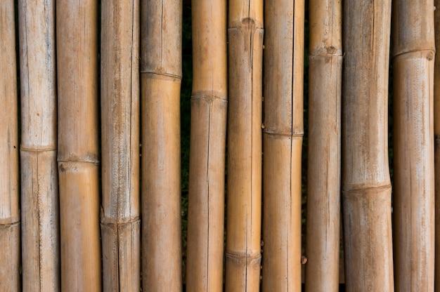 Struttura di recinzione di bambù con sfondo di modelli naturali