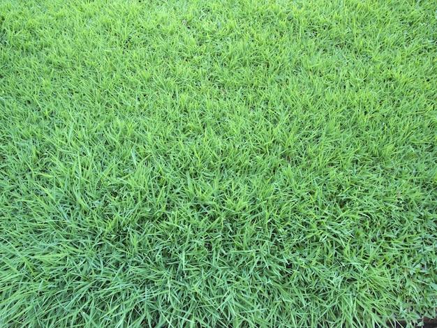 Struttura di vista superiore del campo di erba artificiale