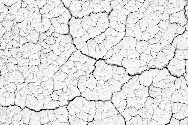 Struttura incrinata del terreno texture di sfondo bianco e nero, crepe nel deserto, superficie asciutta