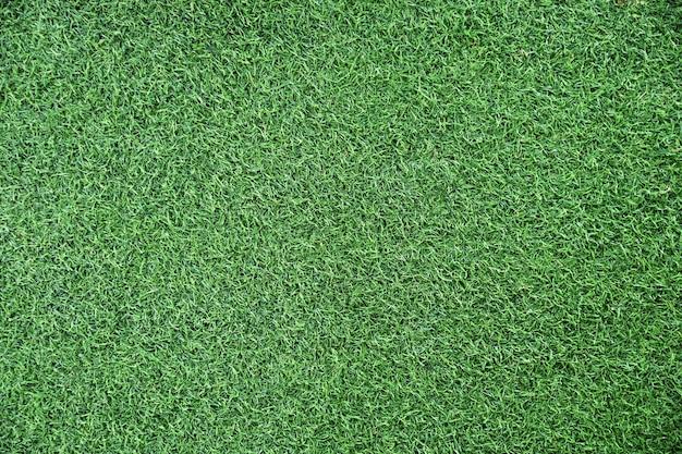 Struttura o progettazione del fondo dell'erba verde
