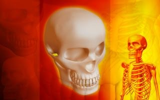 Struttura scheletrica