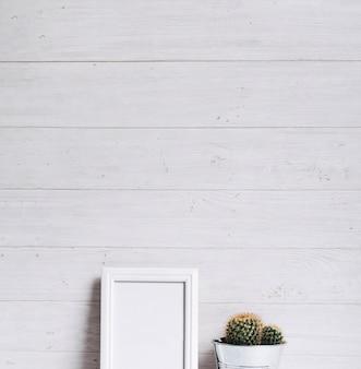 Struttura vuota bianca e pianta del cactus contro fondo di legno