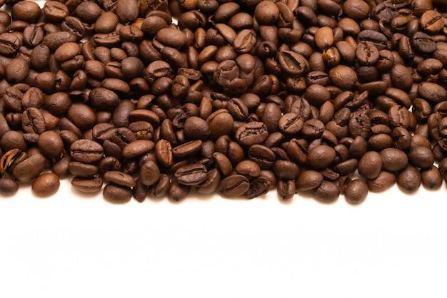 Studio isolato del chicco di caffè sparato su bianco