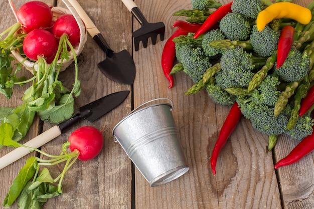 Su un tavolo di legno verdure: asparagi, broccoli, peperoncino, ravanello e articoli per la cura del giardino