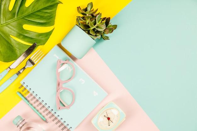 Succulente sul tavolo di colori pastello. disteso, copia spazio
