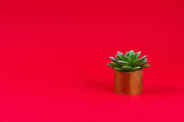 Succulente verde artificiale in una pentola d'oro dalla manica della toilette su uno sfondo rosso bordeaux.