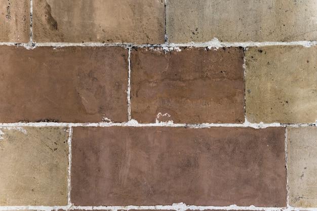 Sullo sfondo del muro di cemento con finiture bianche