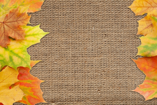 Superficie autunnale di foglie di acero rosse, gialle e verdi su tela ruvida. copia spazio.