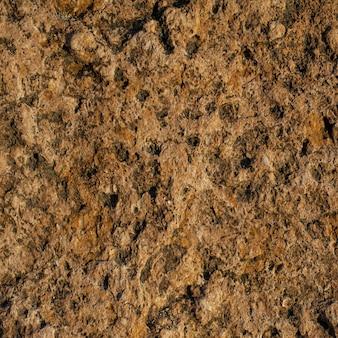Superficie calcarea senza cuciture