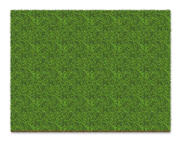 Superficie del piatto del quadrato dell'erba verde, isolata su bianco