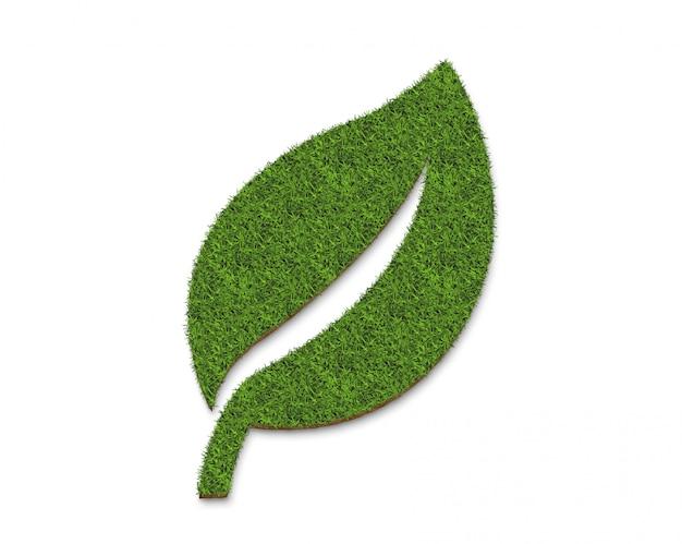 Superficie del piatto della foglia dell'erba verde, isolata su bianco