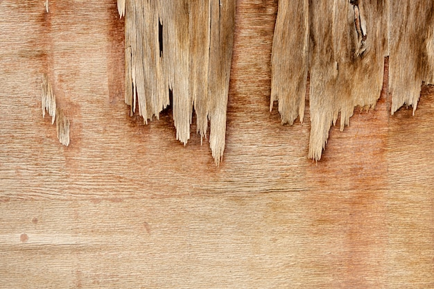 Superficie di legno ruvida con scheggiature