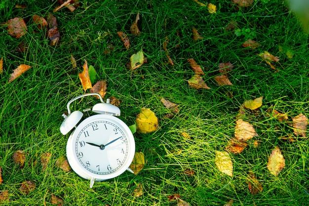 Sveglia bianca con foglie di autunno su erba verde
